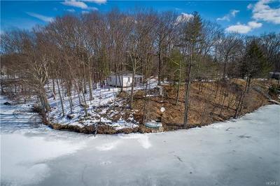 Pine Plains Single Family Home For Sale: 49 Lake Shore Drive