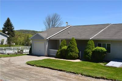 Callicoon, Callicoon Center Single Family Home For Sale