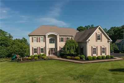Dutchess County Single Family Home For Sale: 20 Ballymeade Road