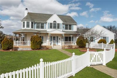 Dutchess County, Orange County, Sullivan County, Ulster County Single Family Home For Sale: 26 Neal Drive