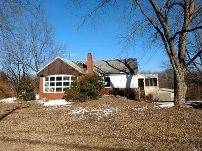 Single Family Home For Sale: 270 Perkinsville Road
