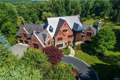 Chappaqua Single Family Home For Sale: 49 Algonquin Drive