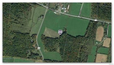 Bethel Commercial For Sale: Lot 27 Nys Hwy 17b
