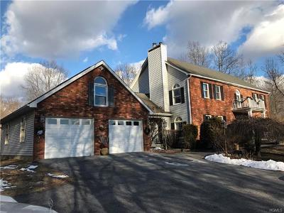Dutchess County Single Family Home For Sale: 47 Wey Road