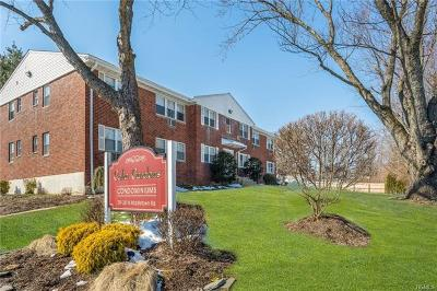 Rockland County Condo/Townhouse For Sale: 241 North Middletown Road #C