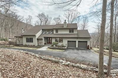 Chester Single Family Home For Sale: 146 Rock Ridge Road