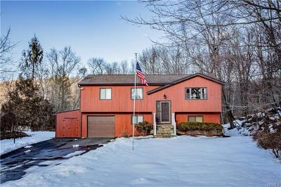 Dutchess County Single Family Home For Sale: 82 Mountain View Drive
