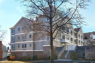 Port Chester Condo/Townhouse For Sale: 342 Westchester Avenue #13E