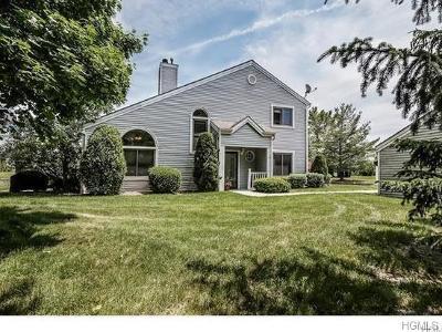 Westchester County Condo/Townhouse For Sale: 28 Sharon Lynn Boulevard