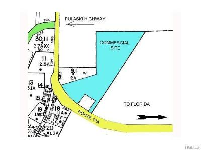 Goshen Residential Lots & Land For Sale: 2076 State Route 17a