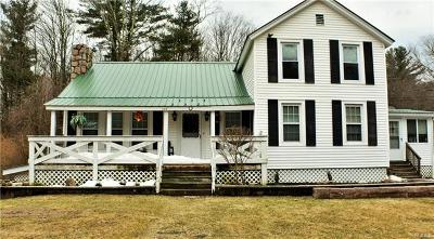 Neversink, Grahamsville, Denning Single Family Home For Sale: 425 Camp Road