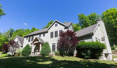 Putnam County Single Family Home For Sale: 24 Canopus Hill Road