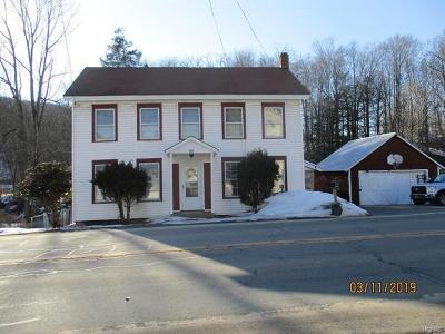 Sullivan County Single Family Home For Sale: 357 Main Street