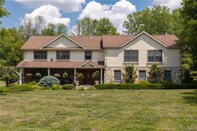 Dutchess County Single Family Home For Sale: 32 Leo Lane
