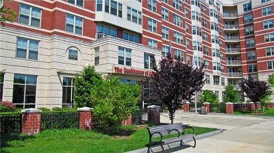 White Plains NY Condo/Townhouse For Sale: $385,000