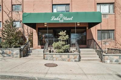 White Plains Rental For Rent: 21 Lake Street #1I