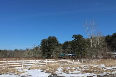 Sullivan County Residential Lots & Land For Sale: 526 Mamakating Road