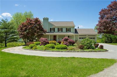 Dutchess County Single Family Home For Sale: 60 Sumner Lane