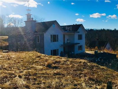 Goldens Bridge Single Family Home For Sale: 115 Waccabuc Road