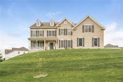 Dutchess County Single Family Home For Sale: 48 Edwin Road