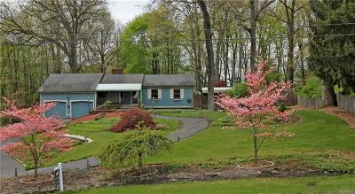 Dutchess County Single Family Home For Sale: 12 Hagan Drive