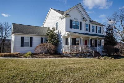 Dutchess County Single Family Home For Sale: 9 Van Scoy Road