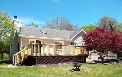 Dutchess County, Orange County, Sullivan County, Ulster County Single Family Home For Sale: 10 Black Bear Road