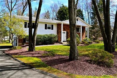 Rockland County Single Family Home For Sale: 5 Sandpiper Drive