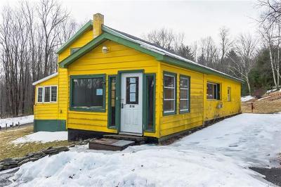 Olivebridge Single Family Home For Sale: 216 Sheldon Hill Road