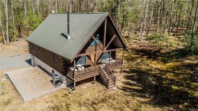 Narrowsburg Single Family Home For Sale: 274 Lake Ridge Road