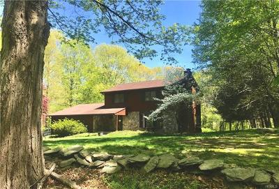 Dutchess County, Orange County, Sullivan County, Ulster County Single Family Home For Sale: 8 Halter Lane