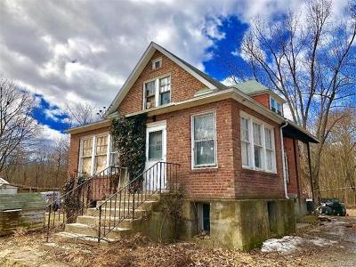 Dutchess County, Orange County, Sullivan County, Ulster County Single Family Home For Sale: 109 Freetown Highway