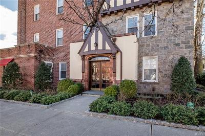 Westchester County Condo/Townhouse For Sale: 1 Cedar Street #3A