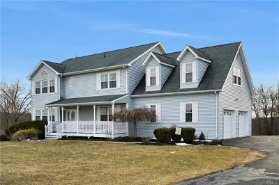 Dutchess County, Orange County, Sullivan County, Ulster County Single Family Home For Sale: 3 College Drive