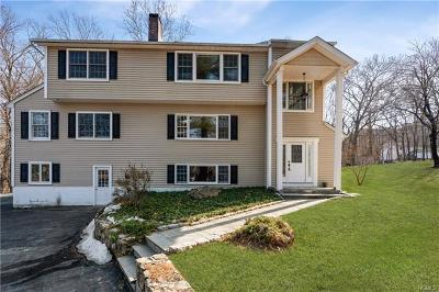 Somers Single Family Home For Sale: 7 Hilldale Avenue
