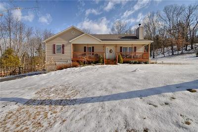 Dutchess County, Orange County, Sullivan County, Ulster County Single Family Home For Sale: 21 Rachel Drive