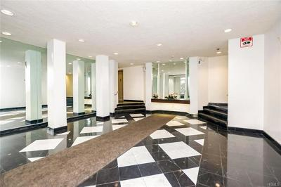 Westchester County Co-Operative For Sale: 42 Pine Street #3M