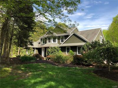Wallkill Single Family Home For Sale: 11 Sky View Court