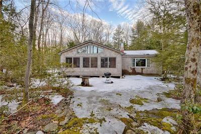 Sullivan County Single Family Home For Sale: 394 South Shore Drive