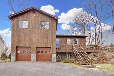 Westchester County Single Family Home For Sale: 17 Rock Cliff Place