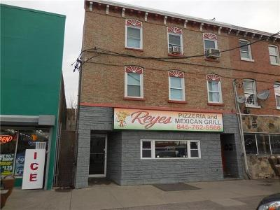 Newburgh Commercial For Sale: 372 Broadway
