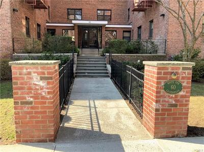 Westchester County Co-Operative For Sale: 60 White Oak Street #3A