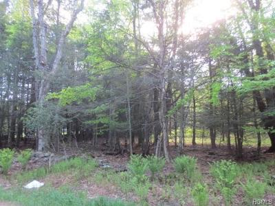 Sullivan County Residential Lots & Land For Sale: Tusten Place