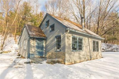 Red Hook Single Family Home For Sale: 1227 Turkey Hill Road