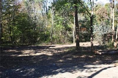 Millbrook Residential Lots & Land For Sale: Chestnut Ridge Road