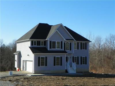 Wappingers Falls Single Family Home For Sale: All Angels Hill