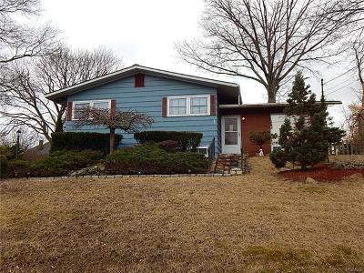 Middletown Single Family Home For Sale: 36 Horton Avenue
