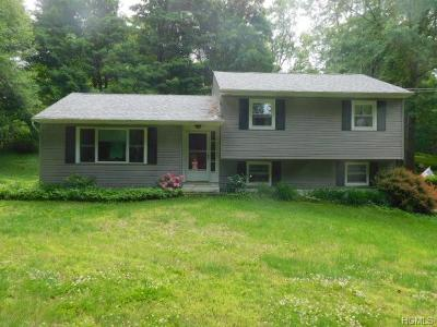 Pine Bush Single Family Home For Sale: 24 Boxberger Road