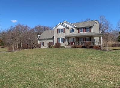 Chester Single Family Home For Sale: 154 Hambletonian Avenue