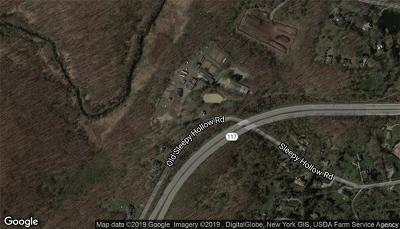 Pleasantville Commercial For Sale: 204 Old Sleepy Hollow Road